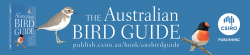 Image. Advertisement: The Australian Bird Guide