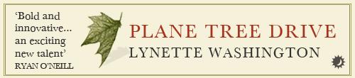 Image. Advertisement: Plane Tree Drive