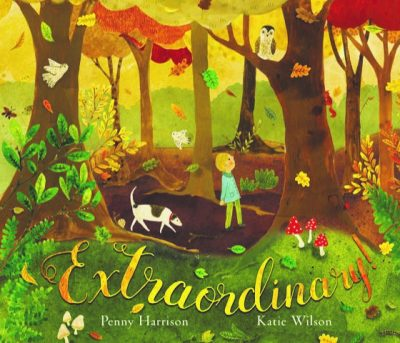 Image result for extraordinary book penny